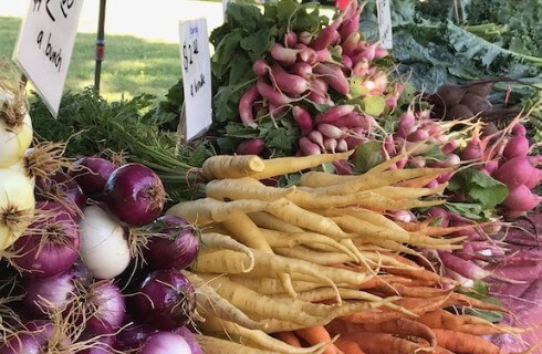 Onions, turnips, carrots, and radishes stacked up for sale at a farmer's market.