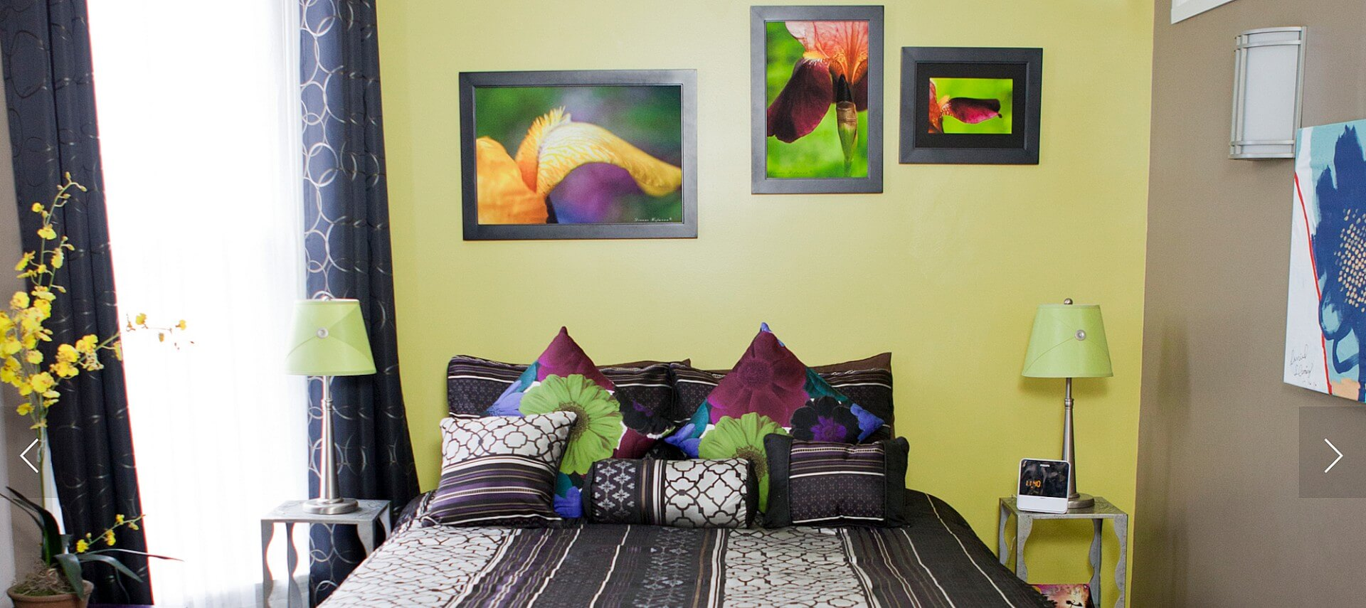 Bedroom with lime and beige walls and a queen bed made up in a black and purple spread and shams.
